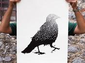 Cuervo Corvo