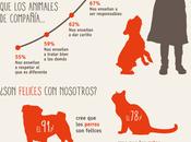 Niños animales#curiosidades#relación#infografía