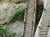 escaleras muerte