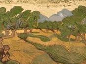 "Artista Stan Herd planta campo Acres inspirado pintura Gogh 1889 ""Olivos"""