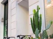 Diseño tienda Cactus Copenhague