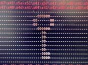 Project Zero detecta nuevas fallas TrueCrypt