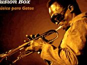 Fusion Box. viaje género musical creo escuela.