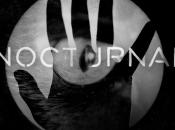 Amaral estrena nuevo single para séptimo álbum estudio