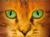 gatos guerreros Aurora
