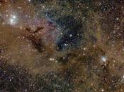 Polvo estrellas Perseo