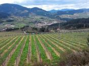 Vizcaya verde: Valle Arratia