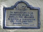 Micorrizas Kítaro [radio]