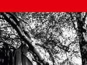 Vicente valero, arte fuga: atrapando almas poetas entre sombras pasado