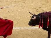 Corrida Toros España Tradicion
