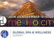 """""""The Global Wellness Summit 2015"""""""