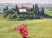 bonsái Toscana Isabel Keats