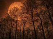 CANCIÓN CUNA. RELATOS ESTREMECEDORES: lectura favorita para Halloween
