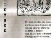 Coplillas ciego Sierra Norte: Noviembre