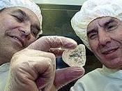 Bacillus permians, vivo durmió 91250 millones días