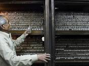 ¿Serán remedios homeopaticos pronto cosa pasado Reino Unido?