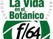 """Colectiva fotográfica Vida Botánico"""""""