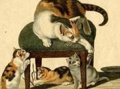 gatos realistas Gottfried Mind