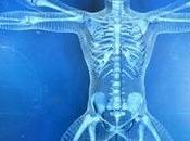 Cronobiología: nueva ciencia cómo hora afecta funcionamiento cuerpo