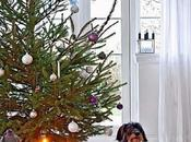 Preparando Navidad Preparing Christmas