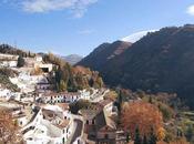 Instrumentos invierno. Granada