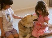 niños piden mascota Reyes Magos