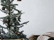 Nordic Natural Christmas