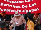 Especial COP16 Carta abierta gobierno mexicano: Sociedad Civil exige Proceso Transparente Democrático