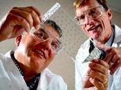 Nuevo parche Ibuprofeno libre riegos para salud, pronto mercado