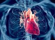 evidencia estatinas estimula arteriosclerosis insuficiencia cardíaca