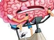 Refrescando neuronas