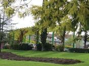 Proyecto Zona Verde Pública Construcciones Elementos asociados (II) Asociados