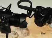 Lumix dmc-fz1000: ¿sirve para ornitólogo?