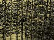Blackwood: piel huesos Jaume Vicent