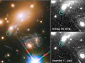 Detección supernova predicha reaparecer cúmulo galaxias