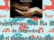 Mañana: miércoles mercadillo solidario Almadén