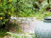 Inspiraciones para cada Sabiduría Japonesa: Proverbios debes olvidar...