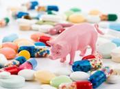 Cómo industria carne contribuye resistencia antibióticos