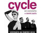 Cycle White bats Sala