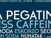 Confirmaciones Festival Gigante 2016