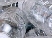 verdadero precio botellas plástico