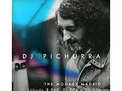 Pichurra Monkey