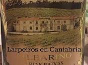 Blanco Gran Bazán Ámbar 1995 magnum: auténtica joya