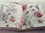 BookTag: Siete cosas sobre Libros
