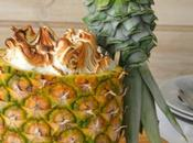 Loro-Piña macerada merengue