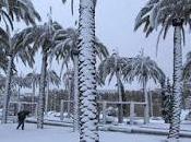 Arabia Saudí registra primera nevada años