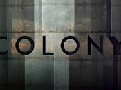 ¡Por colonia!