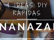 Ideas Rápidas Fáciles