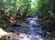 hermoso Salto Escondido.Misiones. Argentina