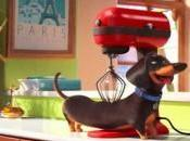 Nuevo tráiler castellano para 'Mascotas', Illumination Entertainment